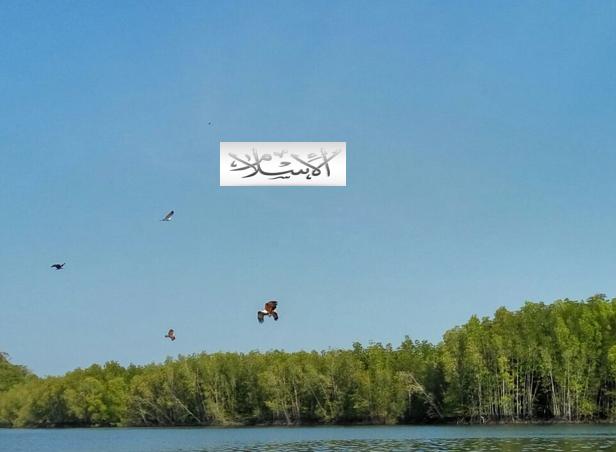 Photo of Beberapa Definisi Islam